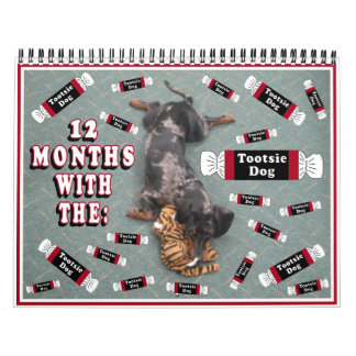 12 months with the tootise dog calendar