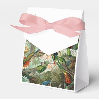 12 pájaros americanos del tarareo crían pintado cajas para regalos