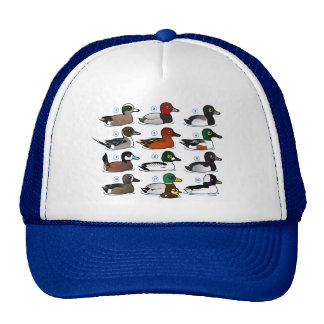 12 patos gorras