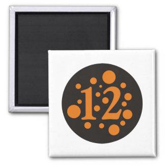 12-Twelve 2 Inch Square Magnet