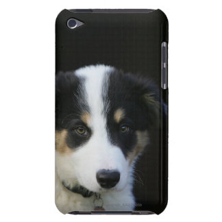 12 Week Old Border Collie Puppy Barely There iPod Case