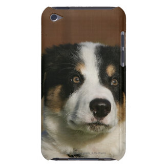 12 Week Old Border Collie Puppy Headshot Barely There iPod Cover