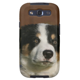 12 Week Old Border Collie Puppy Headshot Galaxy S3 Cover