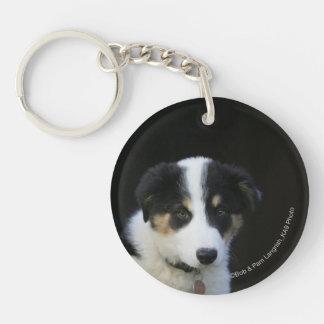 12 Week Old Border Collie Puppy Keychain