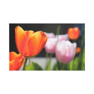 "12"" x 12"", 1.5"", Single Flowers Canvas Print"