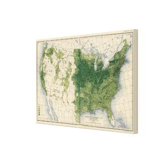 132 Improved land 1900 Canvas Print