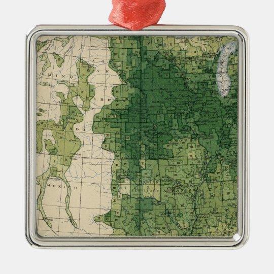 132 Improved land 1900 Metal Ornament