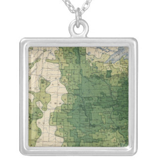 135 Value farm products 1900 Silver Plated Necklace
