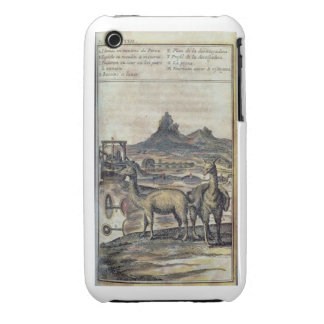 137-0627924 Illustration from a history of Peru sh iPhone 3 Case-Mate Cases
