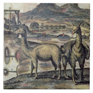 137-0627924 Illustration from a history of Peru sh Ceramic Tile
