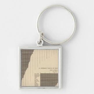 137 Value farm products 1900 Silver-Colored Square Keychain