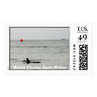 13951_63328_6988898_1133105250mddf2a922d1429ba4... stamp