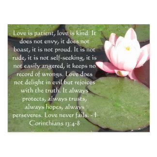13:4 de los Corinthians - VERSO de 8 BIBLIAS SOBRE Postal