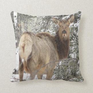 #13-elk (doe) throw pillow