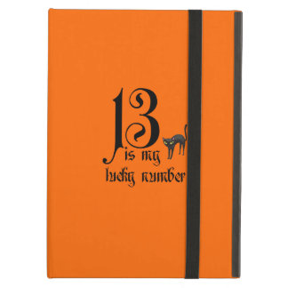 13 is my lucky number+black cat/orange iPad air cover