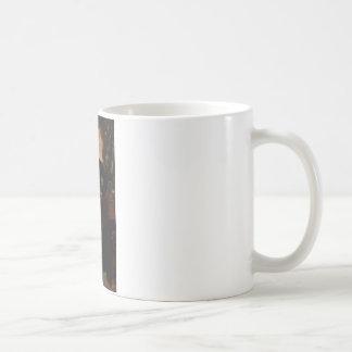 13 Millard Fillmore Coffee Mug
