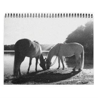 13 month 2011 Calendar