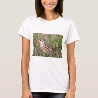 13 stripe ground squirrel T-Shirt