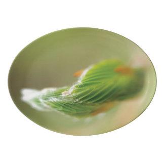 """13"""" x 9.25"""" Porcelain Folded Leaf Coupe Platter"""