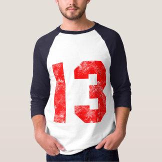 13th Birthday Gifts Tee Shirt