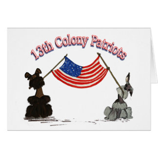 13th Colony Patriots Card