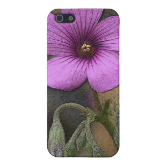 140_4059 cropped (2) case for iPhone SE/5/5s