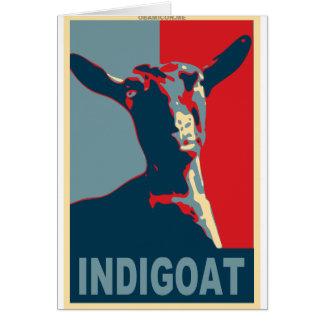 1448603-indigoat card