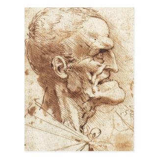 1487 1490) es un dibujo de Leonardo da Vinci amarg Postales
