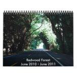 149, Redwood ForestJune 2010 - June 2011 Wall Calendars