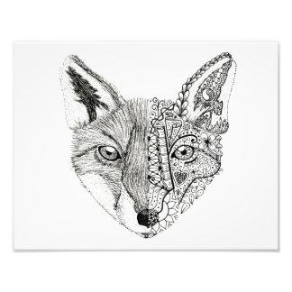 14 x 11 Photo Illustrated Art Fox