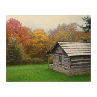 14x11 Wood Canvas - Ferguson Cabin