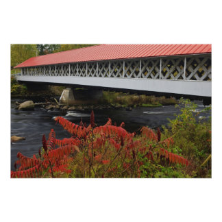 159-foot Ashuelot Covered bridge spanning Poster