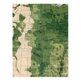 159 Oats/acre Postcard