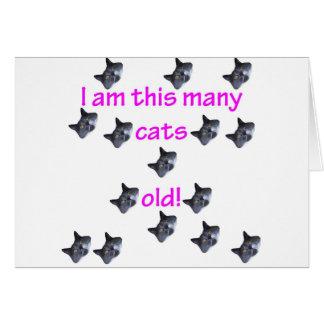 15 cabezas del gato viejas tarjeta de felicitación