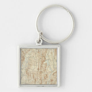 15 Clove sheet Silver-Colored Square Keychain
