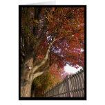 ~ 15 del otoño tarjeta de felicitación
