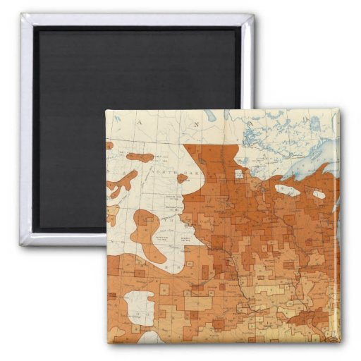 15 Proportion whites foreign parentage 1890 2 Inch Square Magnet