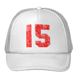 15th Birthday Gifts Trucker Hat