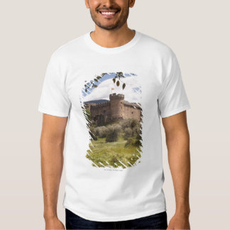 15Th Century Castle Of The Duke Of Alburquerque T-Shirt