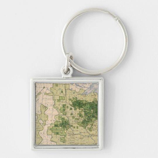 160 Rye/sq mile Keychain