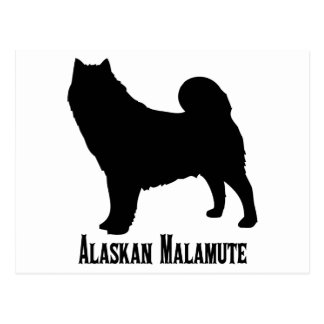 1615112006 Alaskan Malamute (Animales) Postcard