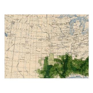 165 Cotton/sq mile Postcard