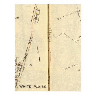 16-17 White Plains Tarjeta Postal