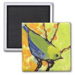 16 Birds, No 2 - Square Magnet