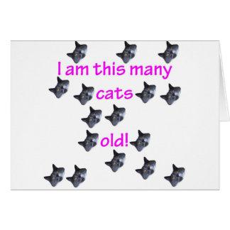 16 cabezas del gato viejas tarjeta de felicitación
