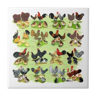 16 Chicken Families Ceramic Tile