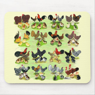 16 Chicken Families Mouse Pad