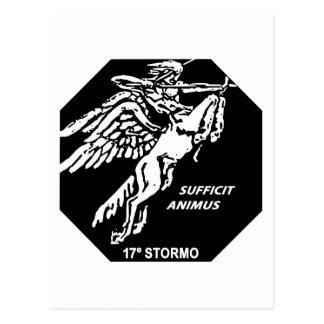 16o Stormo Postcard