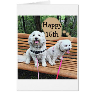 """16th"" BIRTHDAY FOR A SPECIAL TEEN-HAVE FUN Card"