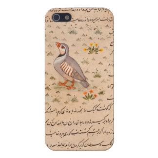 16th Century Chukar iPhone 5 Cover - Savvy